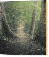 Enchanted Forrest Wood Print
