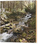 Enchanted Stream - October 2015 Wood Print