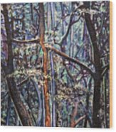 Enchanted Woods Wood Print