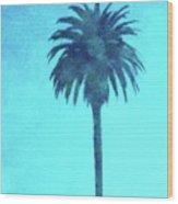 Encinitas Palm Wood Print