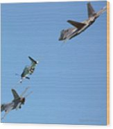 Encore Fly-over Wood Print