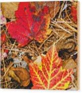 End Of Fall Wood Print