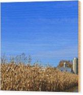 End Of Season Corn 2015 Wood Print
