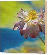 End Of Summer Lotus Wood Print