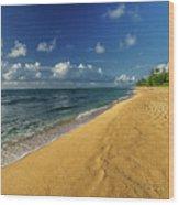 Endless Beach Wood Print