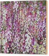 Endless Field Of Flowers Wood Print