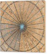 Engineered Wood Dome Wood Print