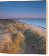 England, Northumberland, Blyth Wood Print