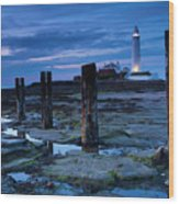 England, Tyne And Wear, St Marys Lighthouse Wood Print
