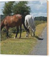 England - Wild Horses Wood Print