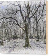 English Forest Snow Art Wood Print