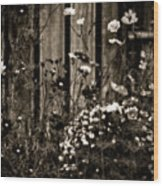 English Garden Noir Wood Print