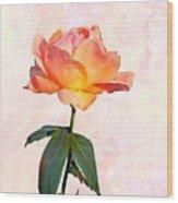 English Garden Rose Wood Print