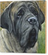English Mastiff Black Face Wood Print