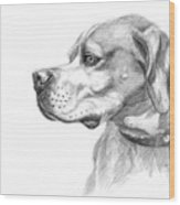English Pointer Sketch Wood Print