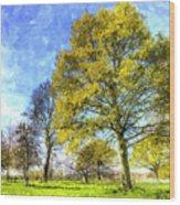 English Summer Farm Art Wood Print