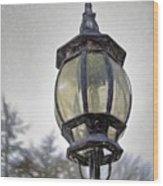 English Victorian Style Park Lamp Wood Print
