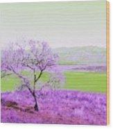 Enhanced Lake Henshaw Wood Print