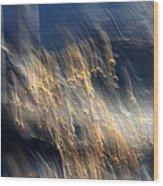 Enigma Wood Print