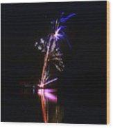 Enigmatic - 160928psg148150704 Wood Print
