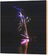 Enigmatic - 160928psg148150704r Wood Print