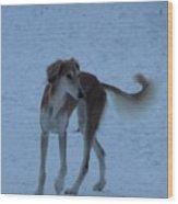 Enjoy The Snow Wood Print