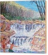 Enjoying Waterfall Wood Print