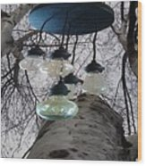 Enlightened Birch Trees Wood Print