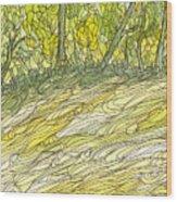Eno River 34 Wood Print