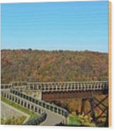 Enter The Kinzua Skywalk Wood Print