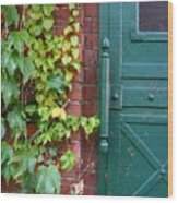 Enter Vine Door Wood Print