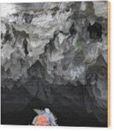 Entering Cave Boat Vietnam  Wood Print