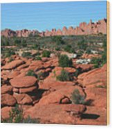 Entrada Sandstone Formations - Arches National Park Wood Print
