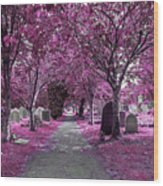 Entrance To A Cemetery Wood Print