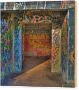Entrance To The Asylum Wood Print