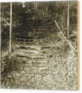 Entrance To Wonderland Wood Print