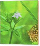Entre Flors Wood Print