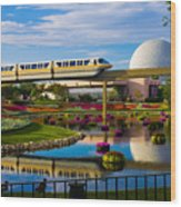 Epcot - Disney World Wood Print by Michael Tesar