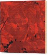 Epiphany 2 Wood Print