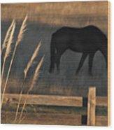 Equine Evening N. California Wood Print