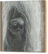 Equine Eye Detail Wood Print by Terry Kirkland Cook