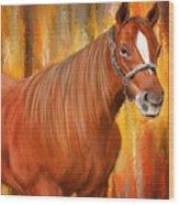 Equine Prestige - Horse Paintings Wood Print