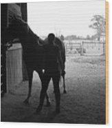 Equus Sapien IIi Wood Print