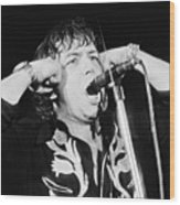 Eric Burdon In Concert-1 Wood Print