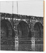 Erie Canal Aqueduct  Wood Print