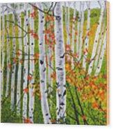 Erin's Birch Trees Wood Print