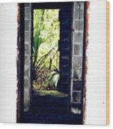 Eroding Door Leading To The Forgotten  Wood Print