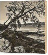 Erosion - Anselized Wood Print