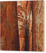 Erotic Rock Wood Print