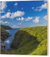 Erris Head, County Mayo, Ireland Wood Print